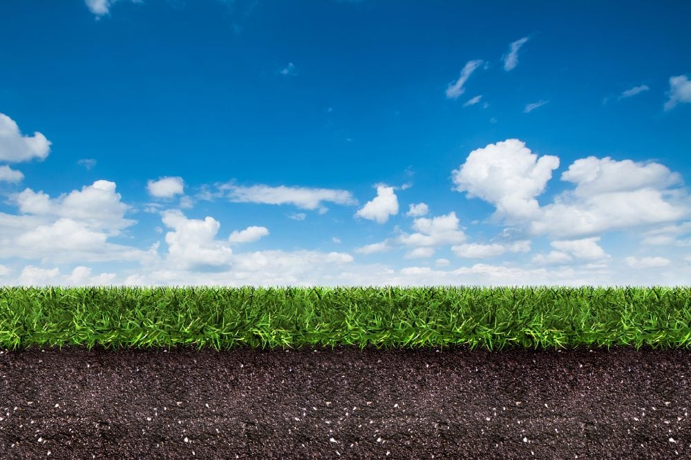sky soil grass grond cielo suelo herbe sol ciel bleu ground met suolo erba blu gras hemel blauwe verde hierba
