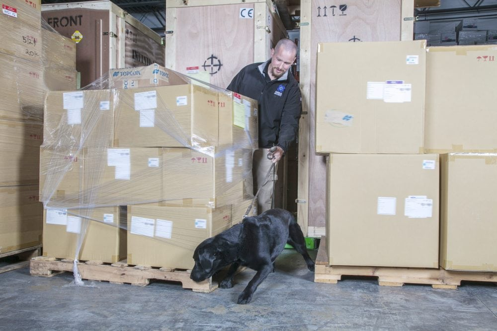 Privatising Bomb Dogs For Air Cargo Screening Are You